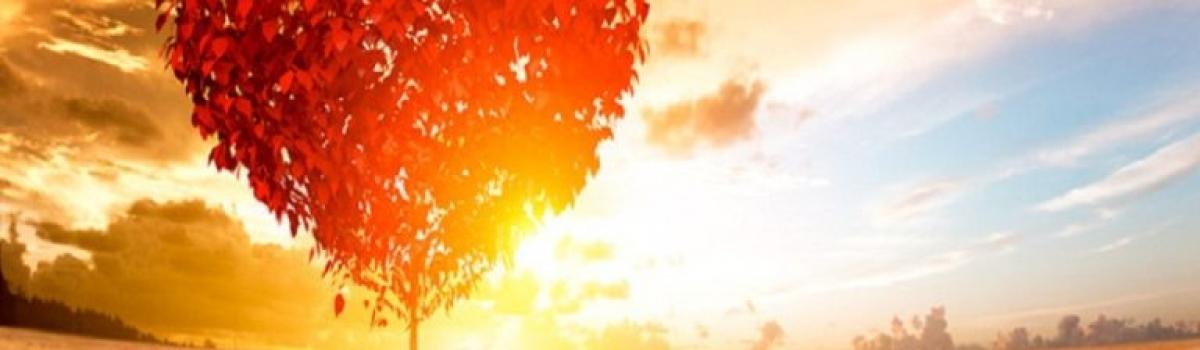We di trattamenti in Seveso 5-6 e 12- 13 ottobre